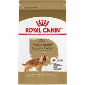 Cocker Suha Hrana Royal Canin