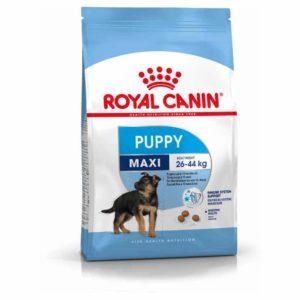Maxi Puppy Suha Hrana Royal Canin
