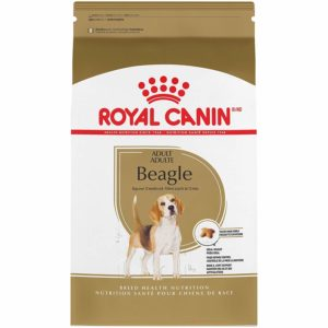 Beagle Adult Suha Hrana Royal Canin