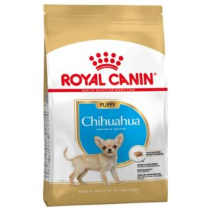 Chihuahua Puppy Royal Canin