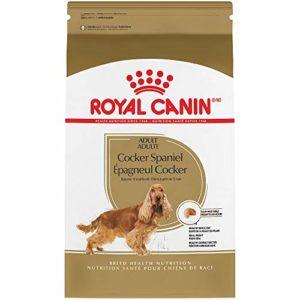 Cocker Suha Hrana Royal Canin