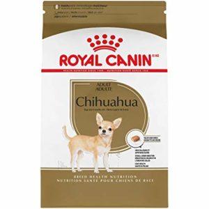 Chihuahua Adult Suha Hrana Royal Canin