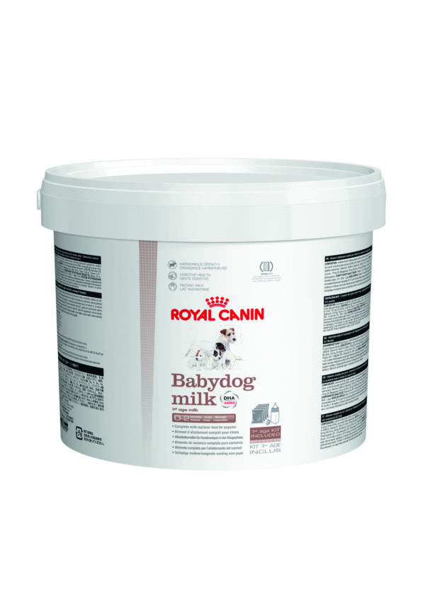 Babydog Milk Royal Canin