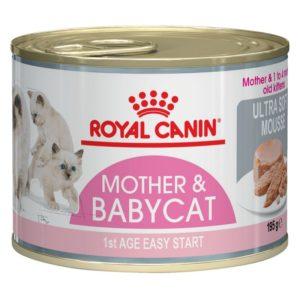 Pločevinka mokre hrane Babycat Instinctive Mousse Royal Canin