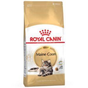 Maine Coon Adult Royal Canin